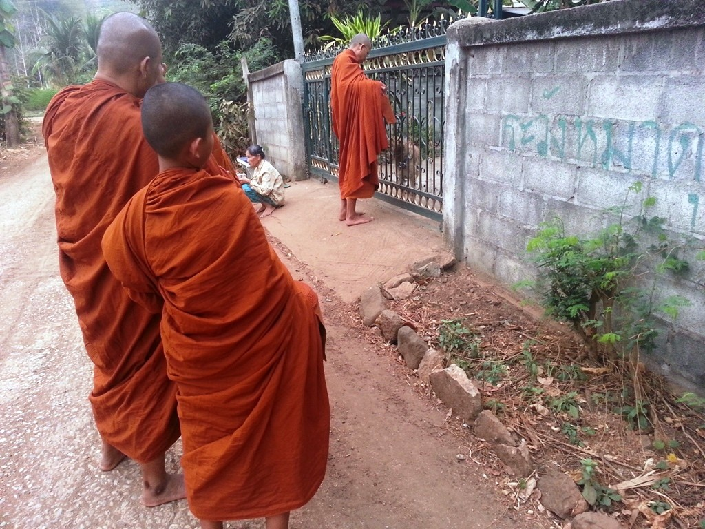 Phra Ajahn offering food to a dog.