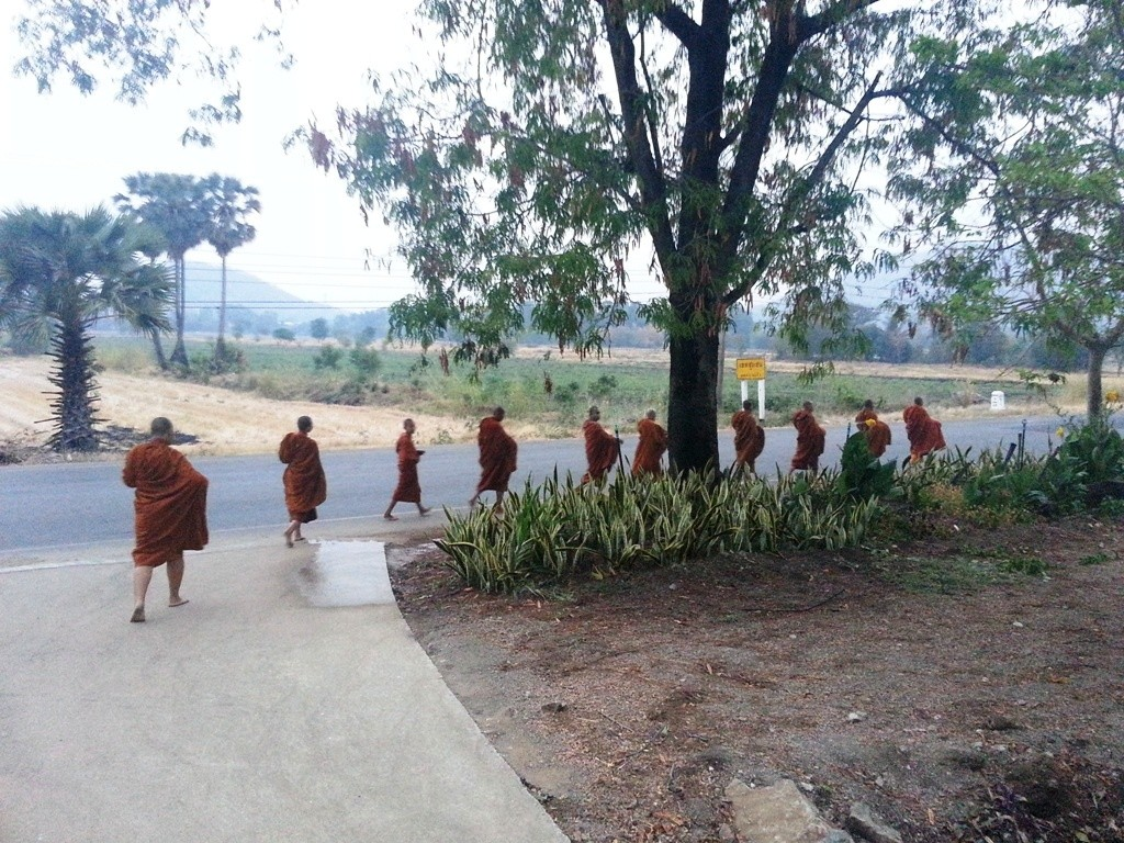 Thai Buddhist monks leaving the monastery for Pindapata