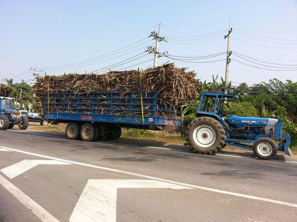 Tractor with Sugar Cane